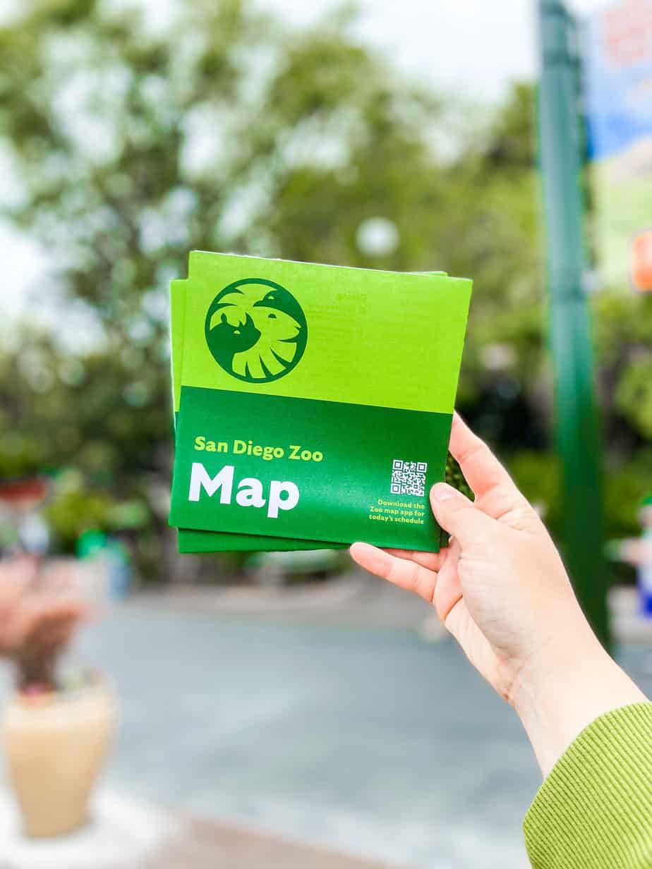 The Best Tips For Visiting the San Diego Zoo with Toddlers